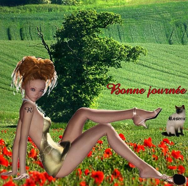 BONNE JOURNEE !